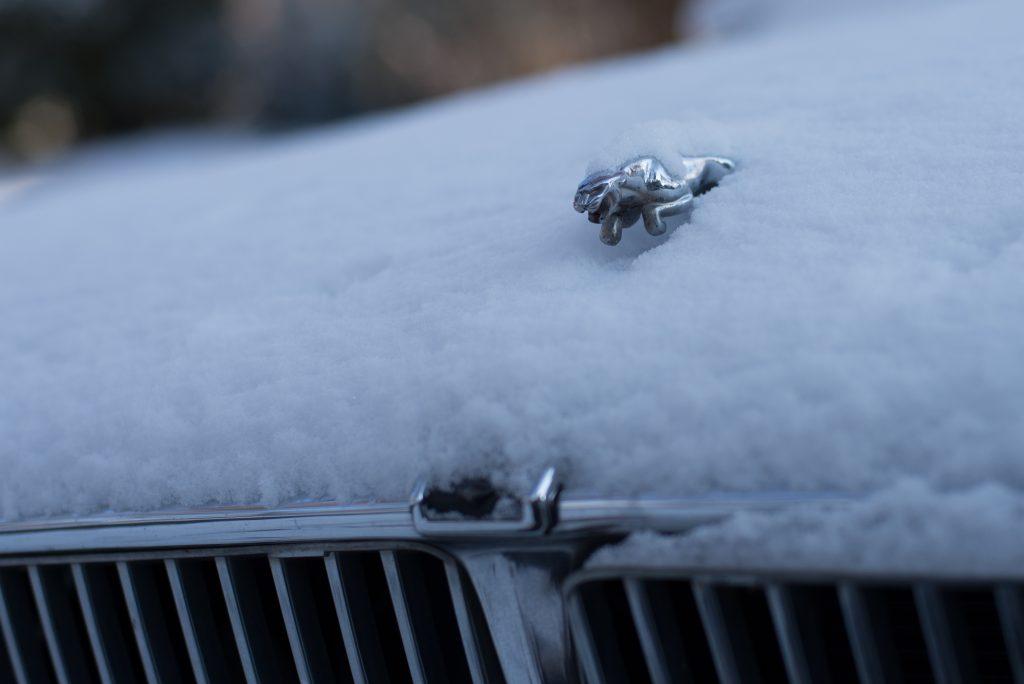 tarry snow-14
